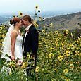 Sunflower Wedding Photo in Colorado at Lionscrest