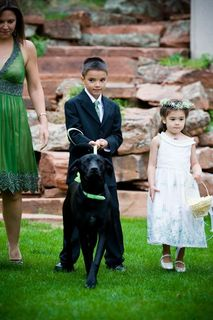 Lionscrest Manor Dog Ring Bearer