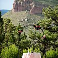 Steamboat Mountain Wedding Ceremony Table with Arch